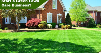 Green Lawn Service